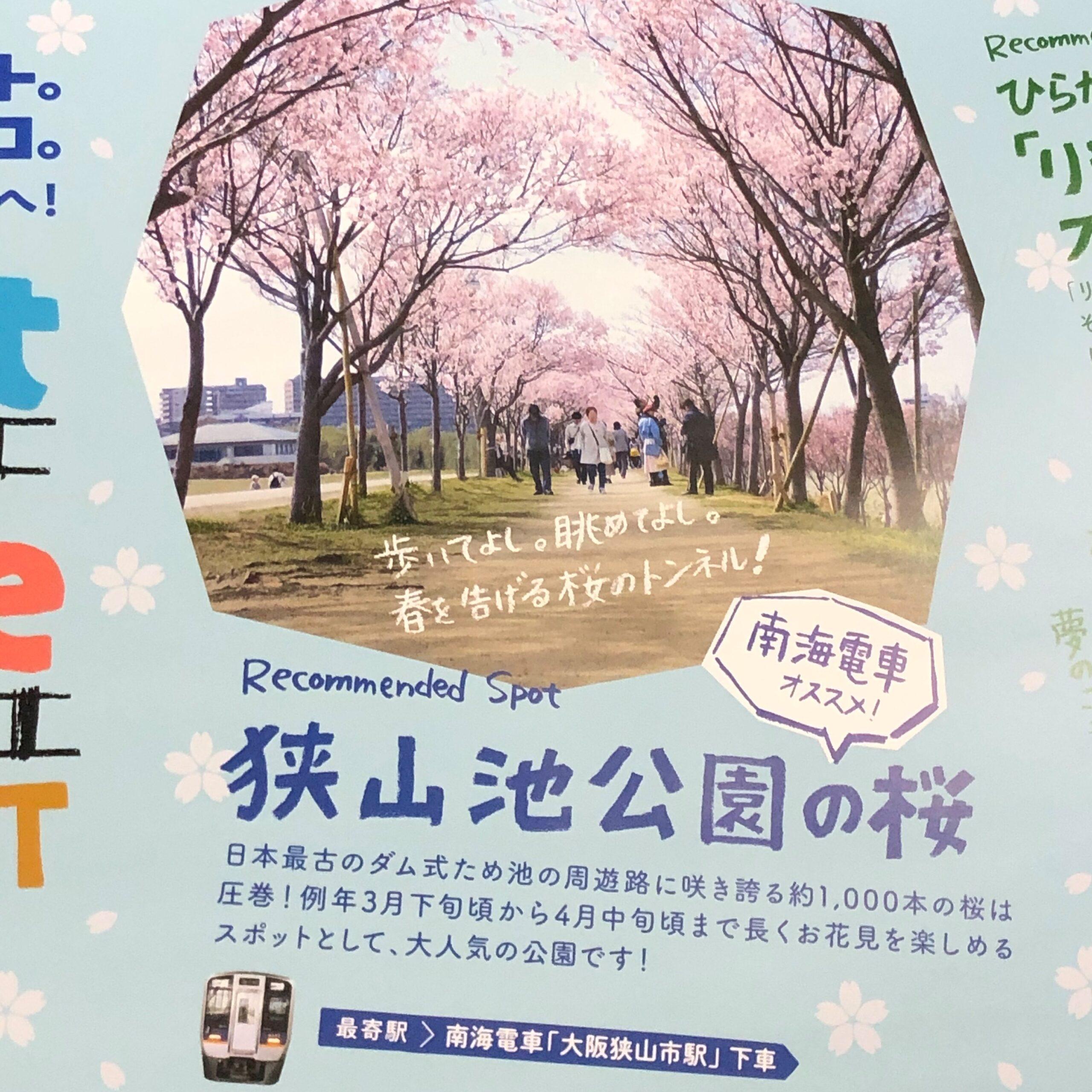 狭山池の桜の中吊り広告